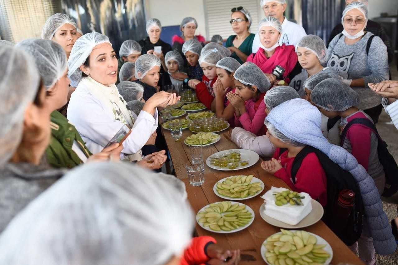 Afrika Orta Doğu İş-yalnızca-zeytinyağı-turizm-trend-in-Türkiye-salgın-zeytin-zamanları