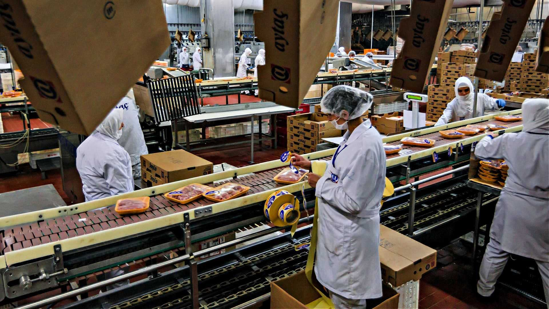 world-study-97-billion-tons-of-greenhouse-gas-emissions-come-from-meat-production-each-year-olive-oil-times
