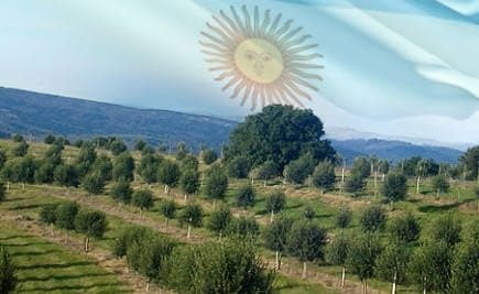 south-america-olive-oil-times-crisis-in-argentina