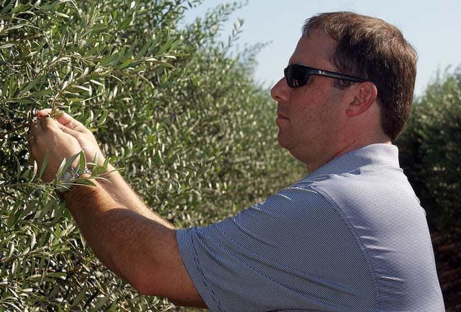 north-america-farm-bill-amendment-draws-attention-to-divided-industry-olive-oil-times-jason-shaw