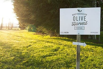 australia-and-new-zealand-production-an-olive-harvest-festival-in-new-zealand-olive-oil-times-an-olive-harvest-festival-in-martinborough