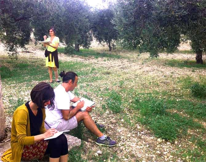 opinion-world-an-openair-workshop-of-sustainability-olive-oil-times-an-openair-workshop-of-sustainability