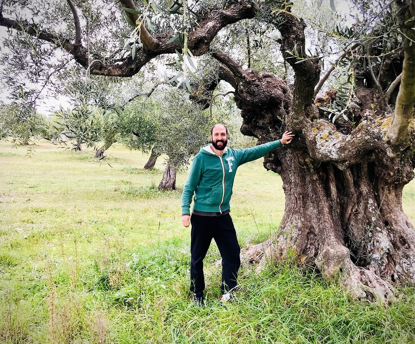 business-europe-new-eu-ag-policy-could-benefit-greek-olive-growers-if-requirements-are-met-olive-oil-times