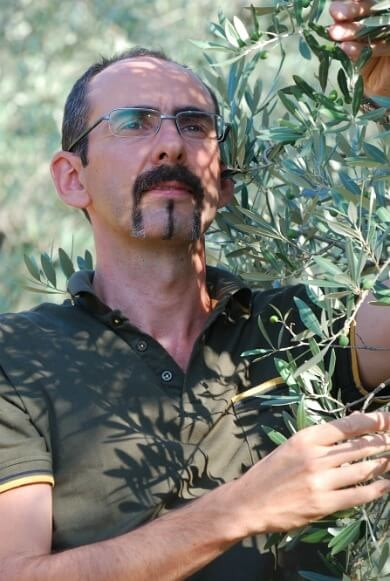europe-organic-farming-high-quality-often-hand-in-hand-olive-oil-times